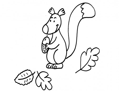 kostenlose malvorlage herbst eichhörnchen ausmalen zum