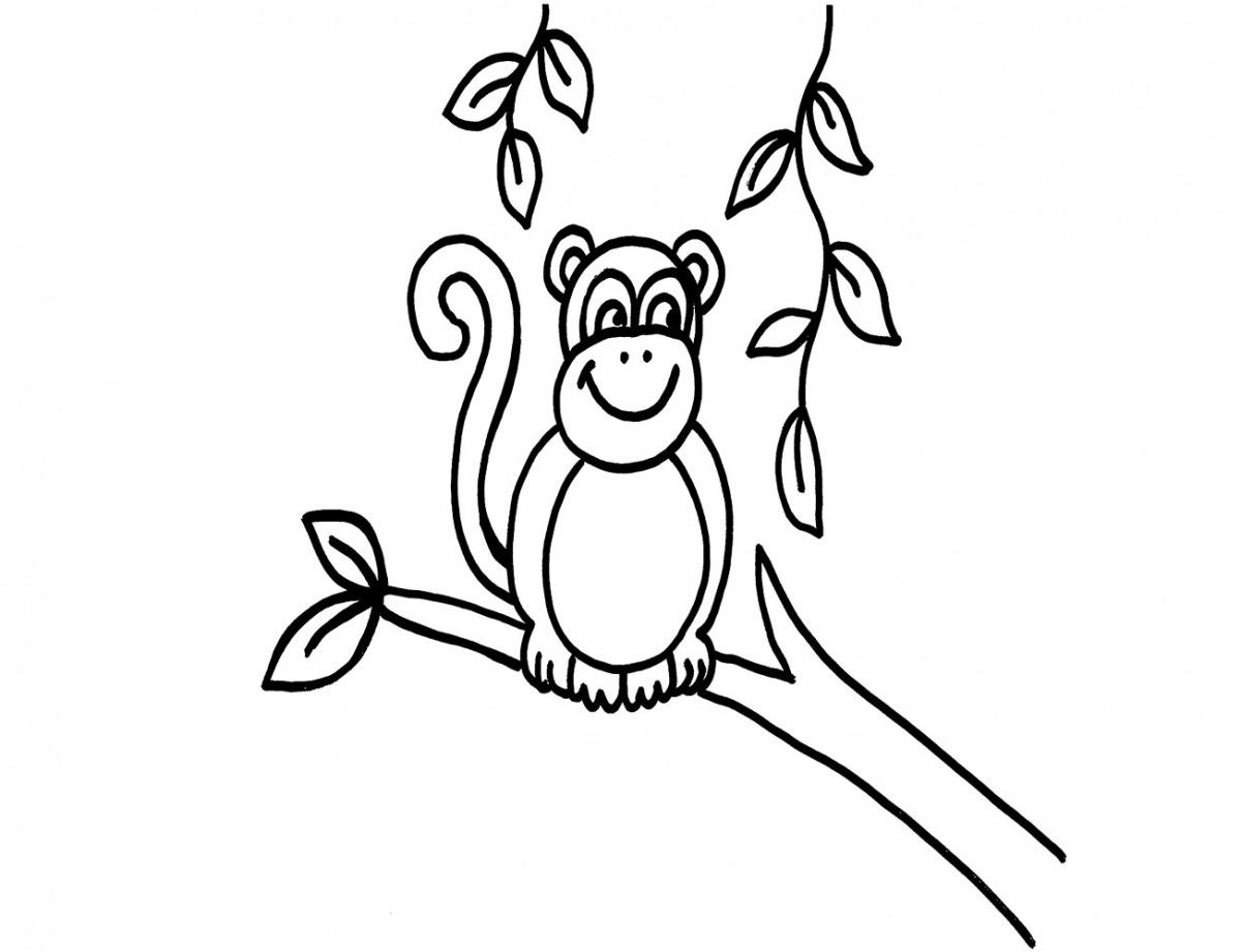 Kostenlose Malvorlage Tiere: Affe ausmalen zum Ausmalen
