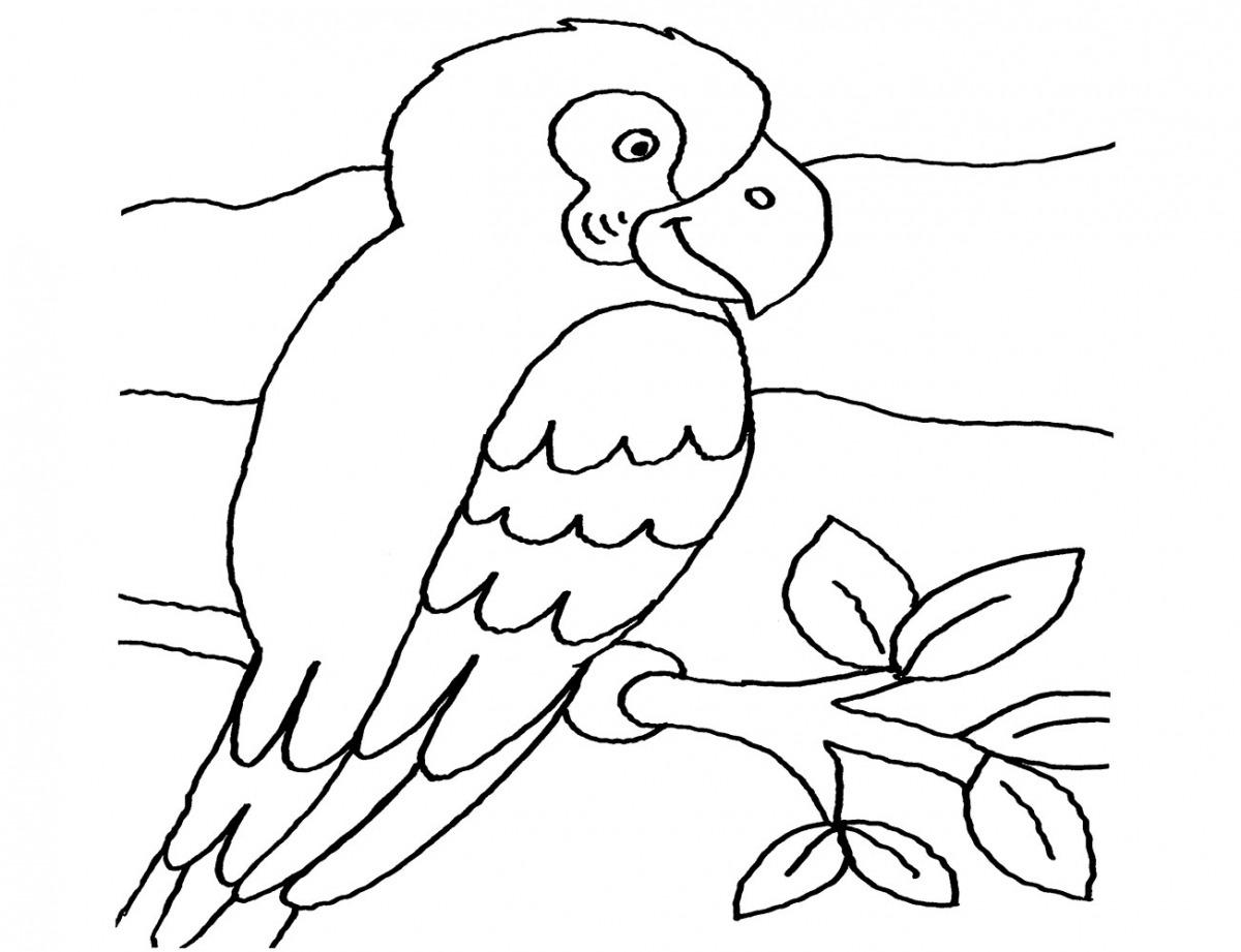 Kostenlose Malvorlage Vögel: Papagei zum Ausmalen zum Ausmalen