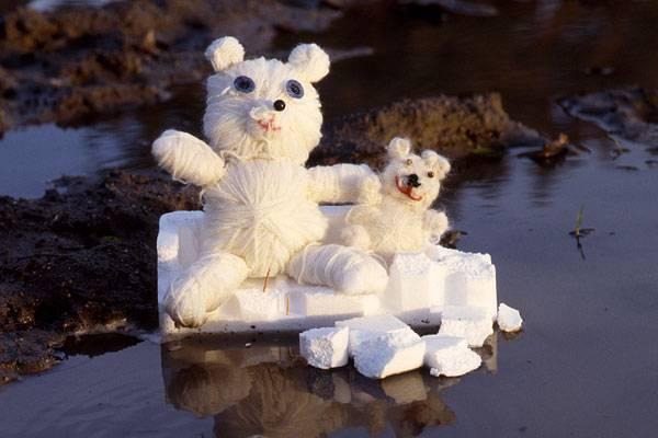 Basteln Mit Kindern Kostenlose Bastelvorlage Tiere Kleiner Und