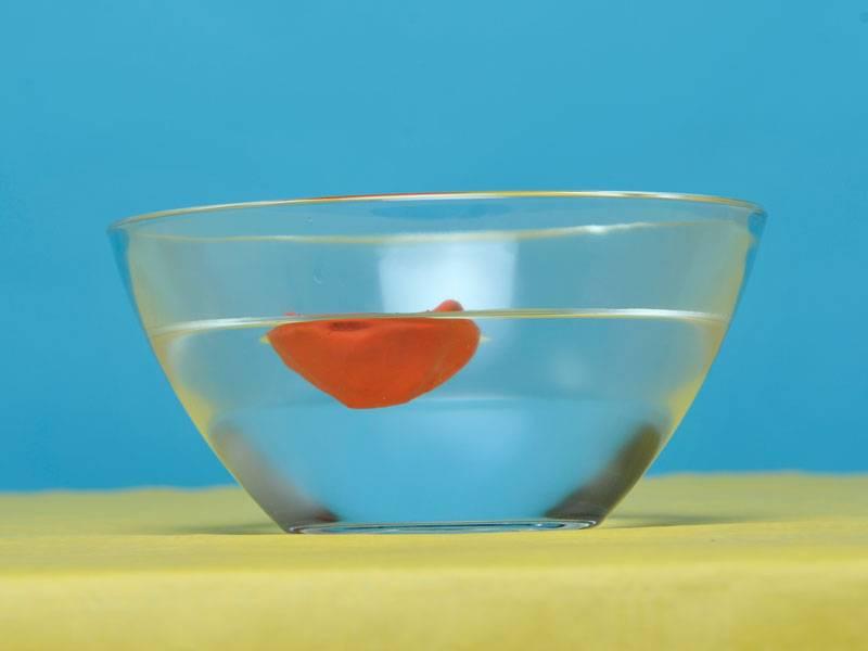 experiment f252r kinder experimente mit wasser auftrieb