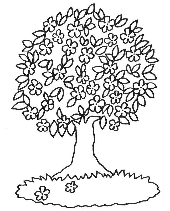 Kostenlose Malvorlage Bäume: Blühender Baum zum Ausmalen