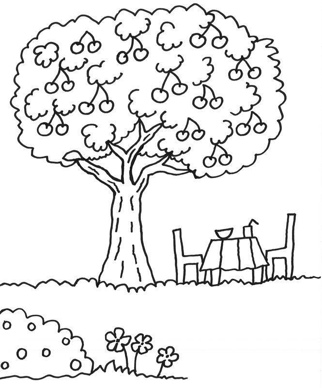 kostenlose malvorlage bäume kirschbaum zum ausmalen