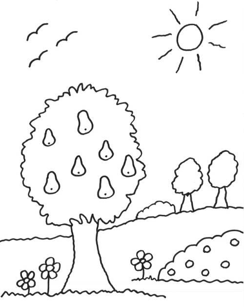 kostenlose malvorlage bäume birnenbaum zum ausmalen