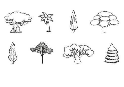 kostenlose malvorlage bäume verschiedene bäume ausmalen