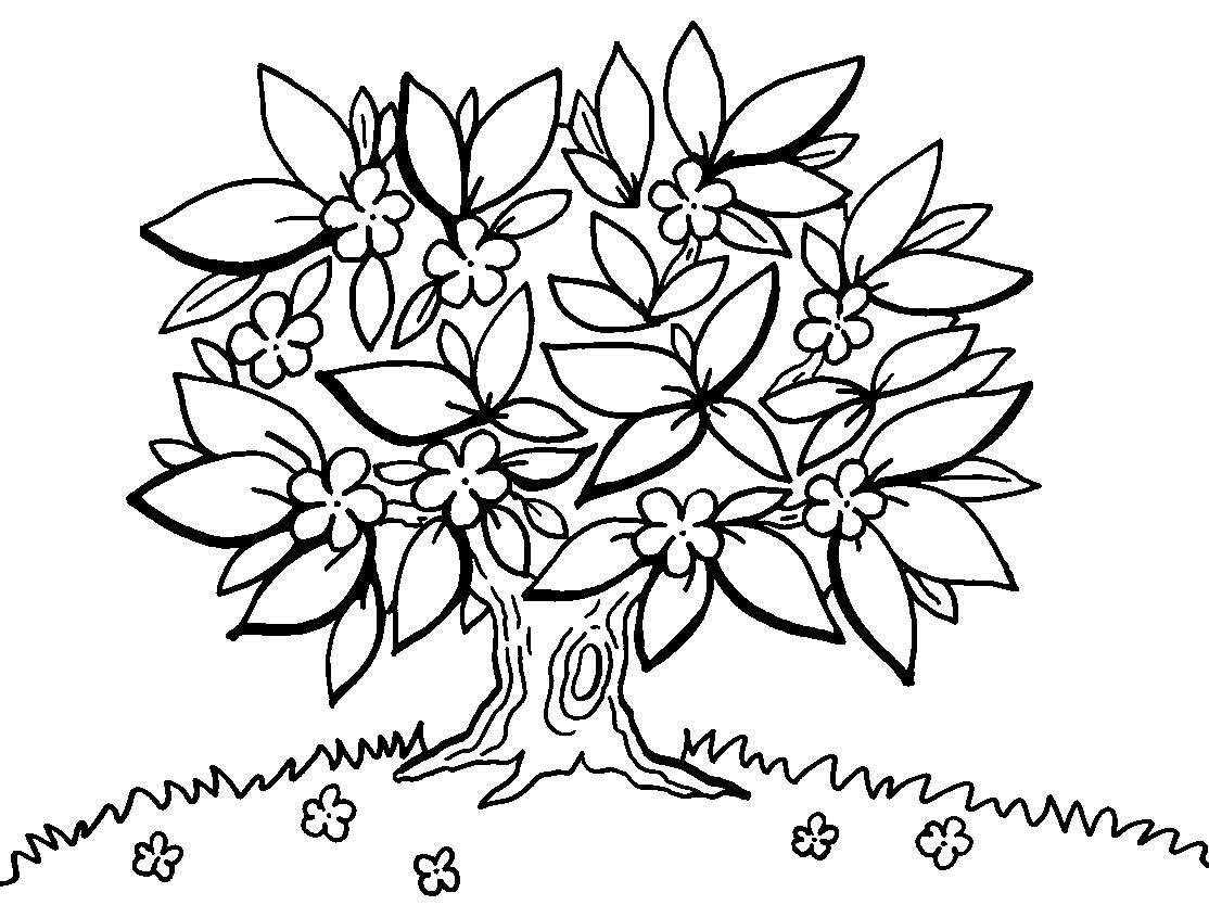 Ausmalbild Bäume: Motivationsbaum kostenlos ausdrucken