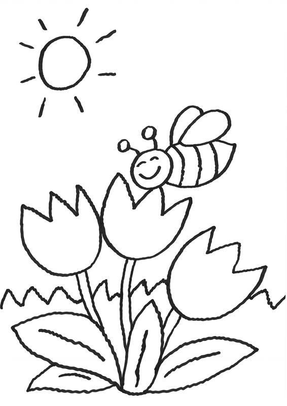 Ausmalbild Blumen: Biene auf der Blume kostenlos ausdrucken