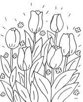 kostenlose malvorlage blumen: kostenlose malvorlage: tulpe zum ausmalen