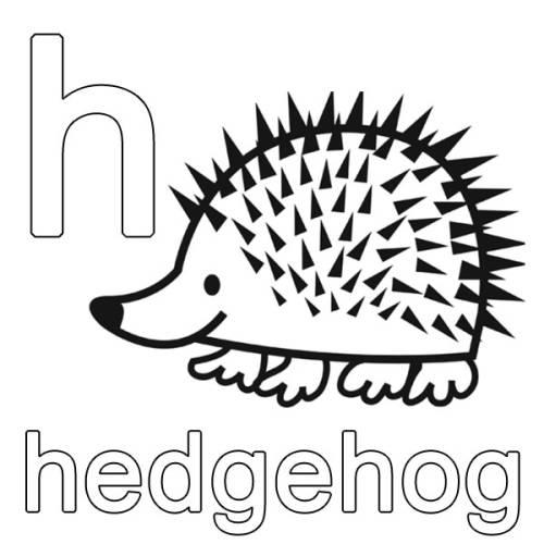 kostenlose malvorlage englisch lernen hedgehog zum ausmalen
