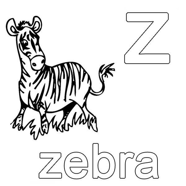 Ausmalbild Englisch Lernen Zebra Kostenlos Ausdrucken