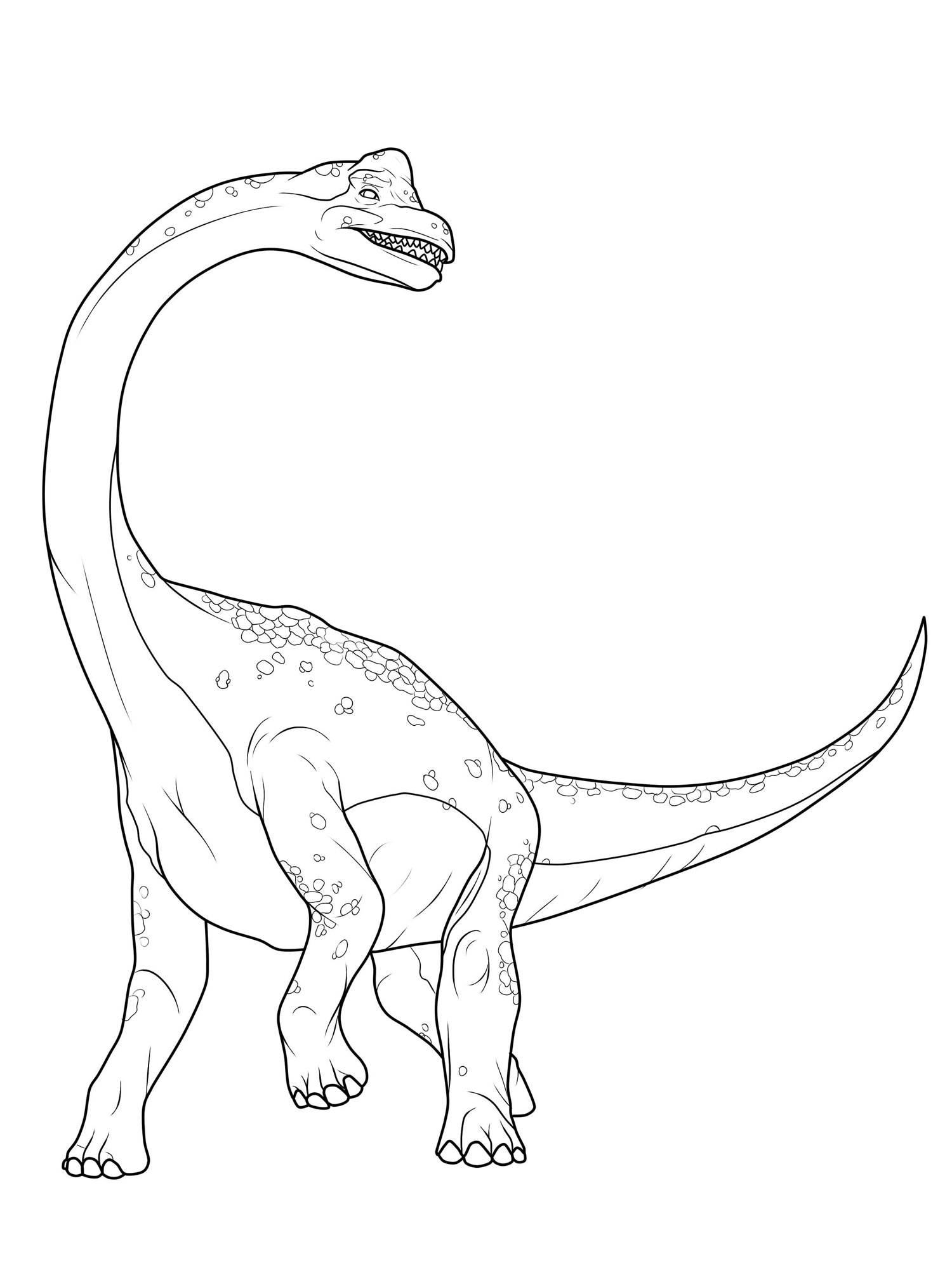 Dinosaurier Ausmalbilder Kostenlos Ausdrucken : Ausmalbild Dinosaurier Und Steinzeit Dinosaurier Brachiosaurus