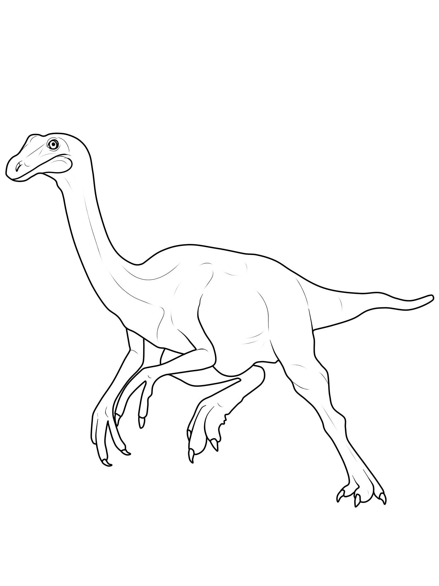 Ausmalbild Dinosaurier Und Steinzeit Dinosaurier Gallimimus