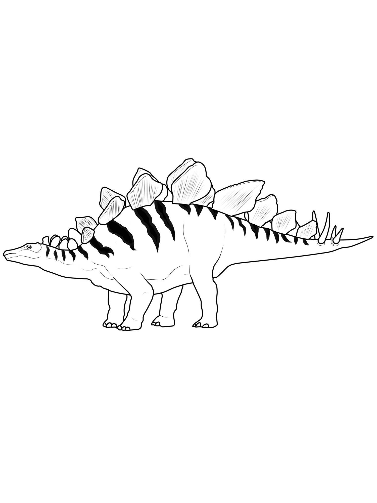 Ausmalbilder Dinosaurier Kostenlos Ausdrucken : Ausmalbild Dinosaurier Und Steinzeit Dinosaurier Stegosaurus