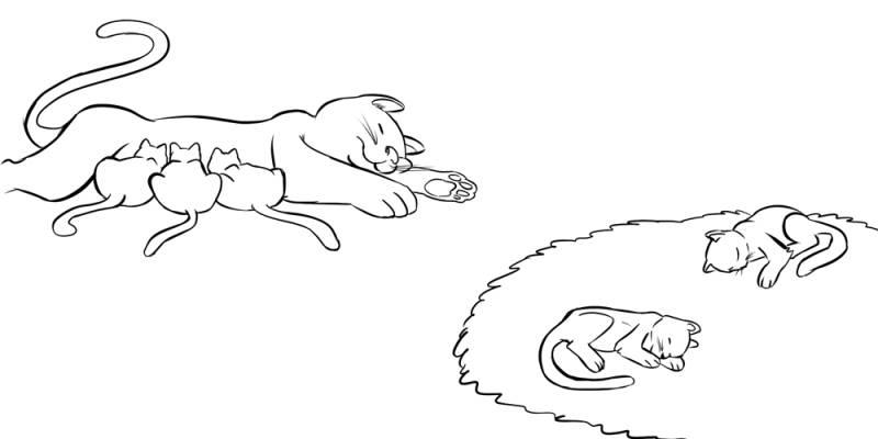Ausmalbild Menschen Und Ihr Zuhause Katzenfamilie Im Wohnzimmer Kostenlos Ausdrucken