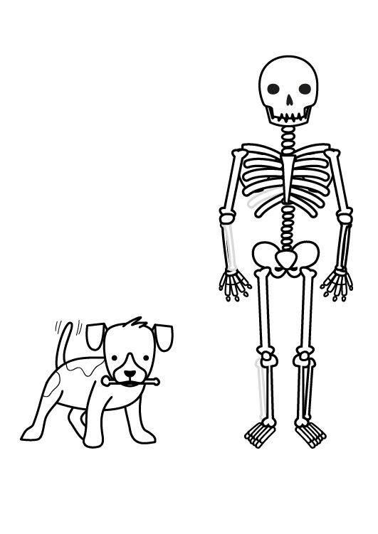 skelett spiele kostenlos