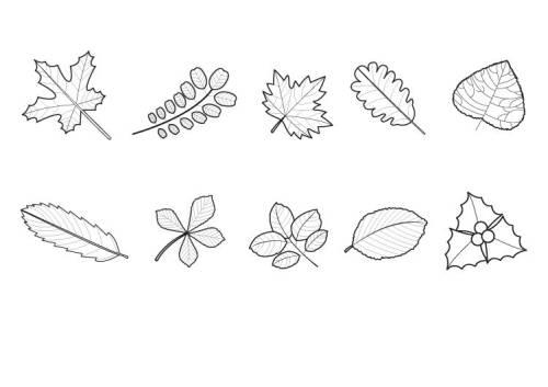 Kostenlose Malvorlage Herbst: Herbstlaub ausmalen zum Ausmalen