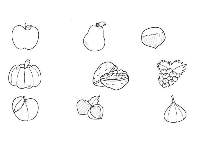 Ausmalbilder Herbst Kürbis: Kostenlose Malvorlage Herbst: Herbstfrüchte Ausmalen Zum