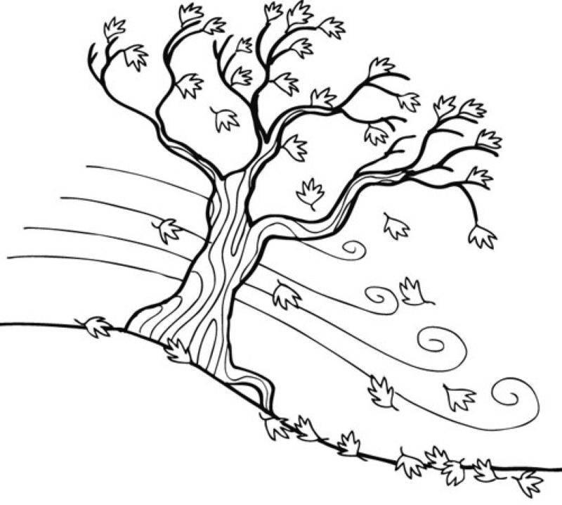 Kostenlose Malvorlage Herbst: Herbstbaum zum Ausmalen