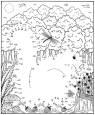 Malen nach Zahlen: Malen nach Zahlen: Eichhörnchen zum Ausmalen