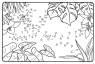 Malen nach Zahlen: Malen nach Zahlen: Kolibri zum Ausmalen