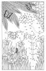 Malen nach Zahlen: Malen nach Zahlen: Papagei und Schlange zum Ausmalen