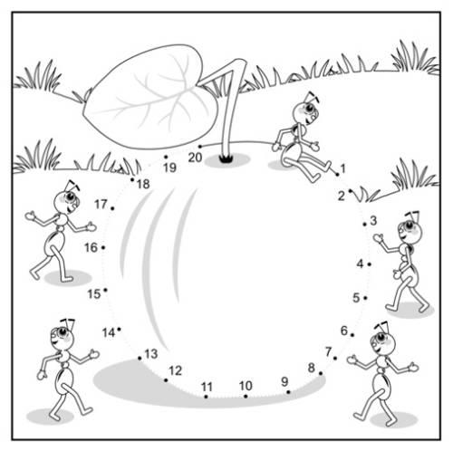Kostenlose Malvorlage Malen Nach Zahlen Ameisen Auf Einem Apfel Zum