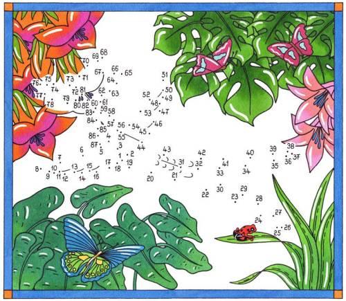 Kostenlose Malvorlage Malen Nach Zahlen Kolibri Und Schmetterlinge