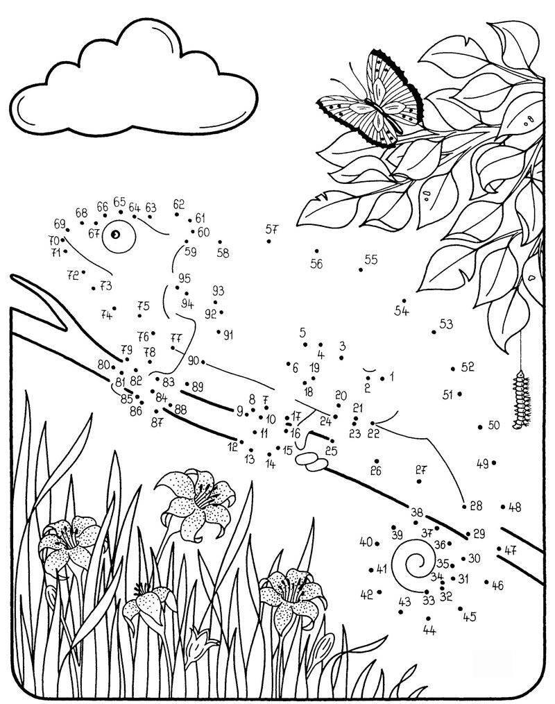 Ausmalbild Malen nach Zahlen: Chamäleon kostenlos ausdrucken