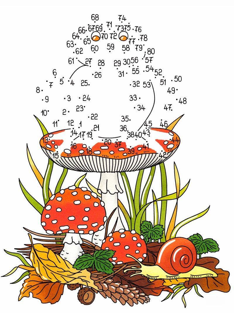 Kostenlose malvorlage malen nach zahlen frosch zum ausmalen - Dibujos en colores para imprimir ...