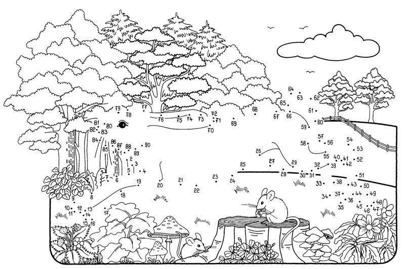 Ausmalbild Malen nach Zahlen: Hase kostenlos ausdrucken