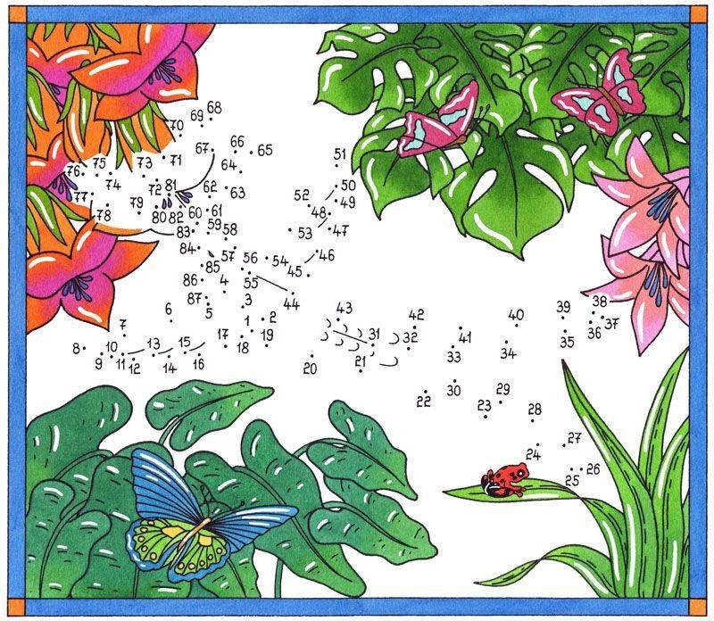 Kostenlose malvorlage malen nach zahlen kolibri und for Dschungel malen
