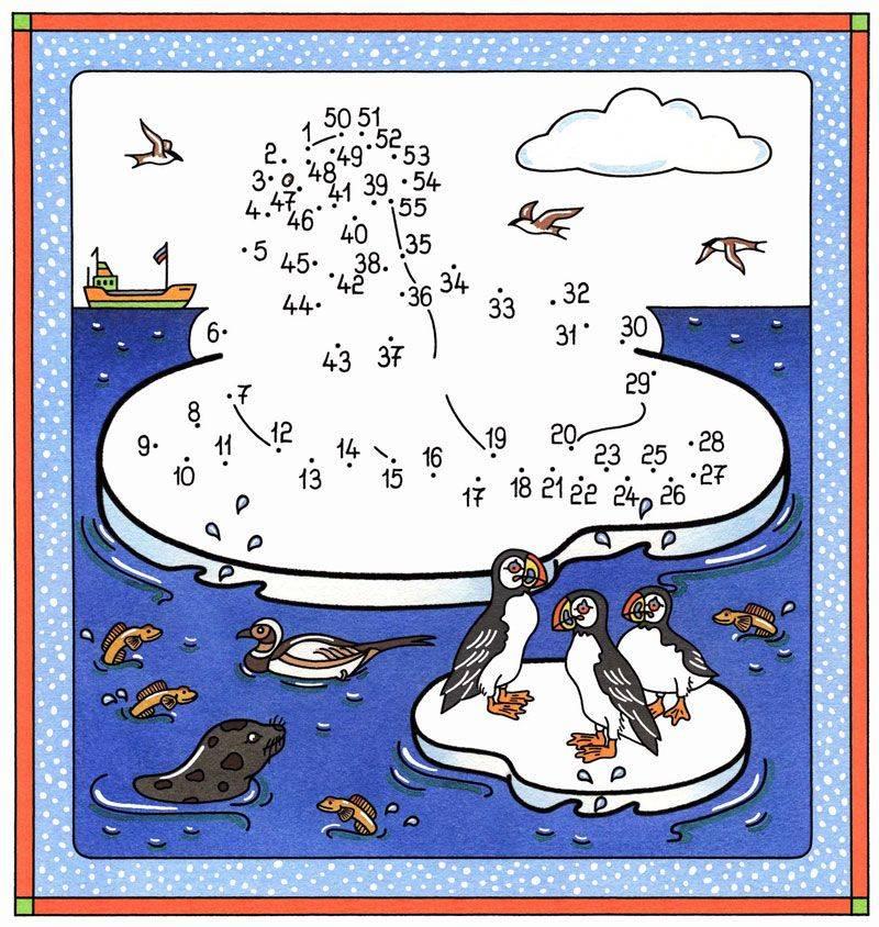 Ausmalbild Malen Nach Zahlen Walross Und Pinguine Kostenlos Ausdrucken