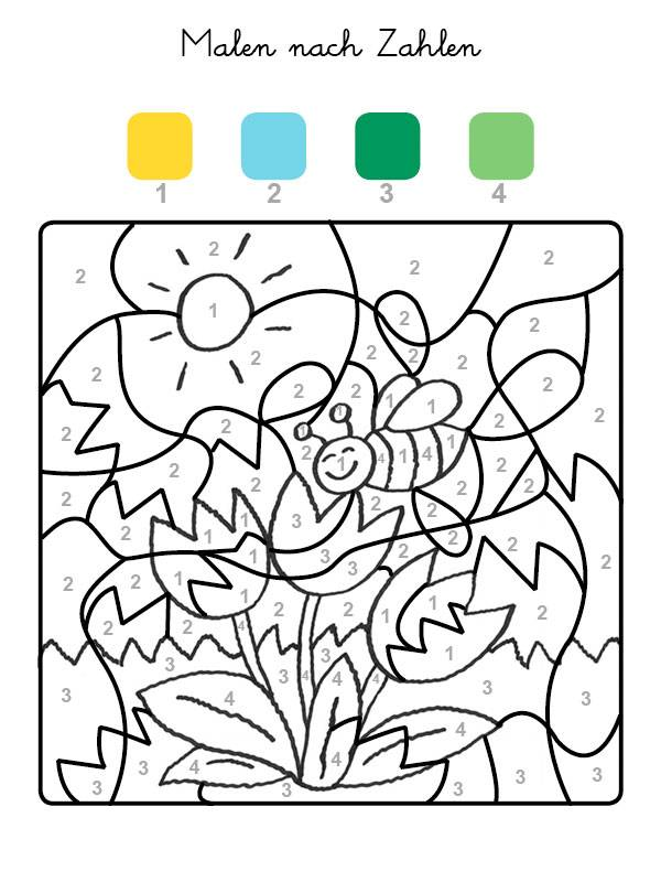 ausmalbild malen nach zahlen tulpen ausmalen kostenlos