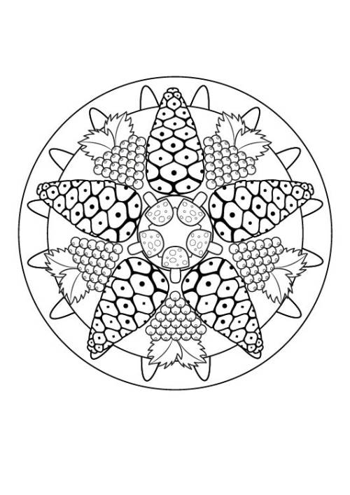 Kostenlose Malvorlage Mandalas: Herbst-Mandala zum Ausmalen zum Ausmalen