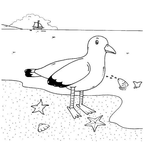 Kostenlose Malvorlage Vögel: Möwe am Meer zum Ausmalen