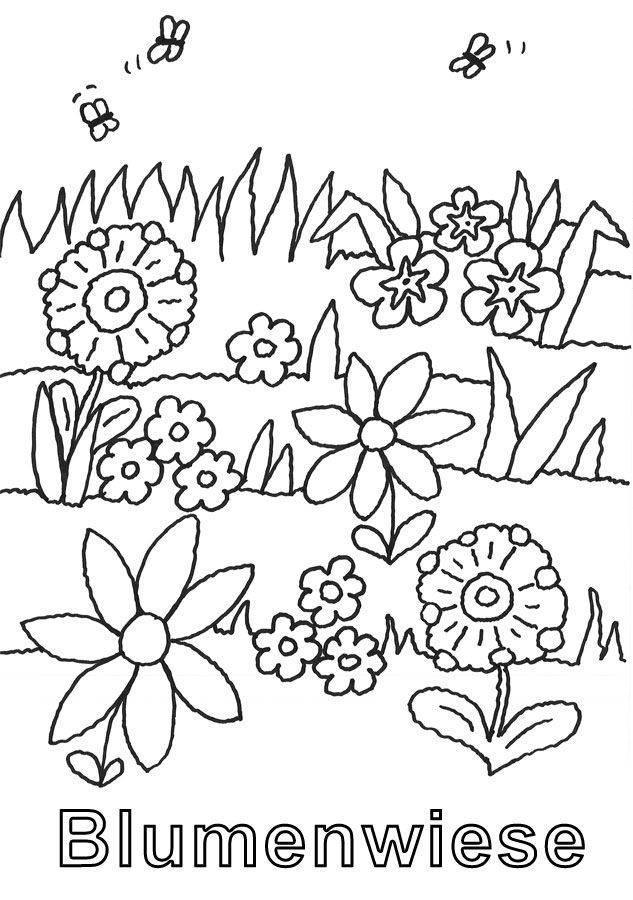 kostenlose malvorlage natur blumenwiese zum ausmalen zum