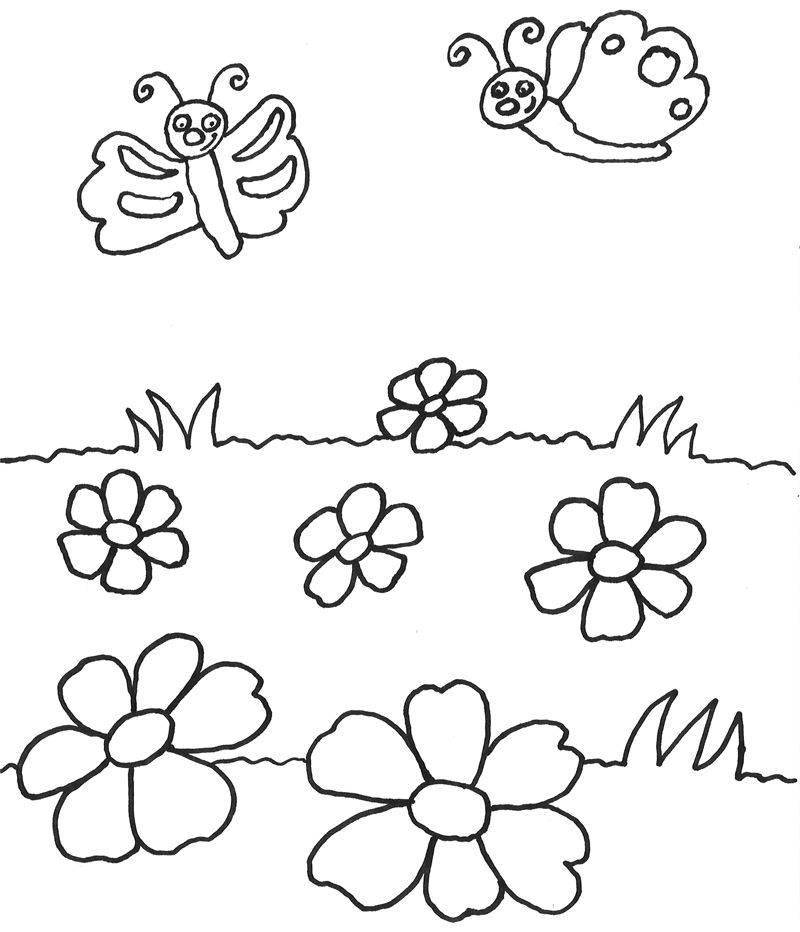 Ausmalbild Tiere Schmetterlinge Auf Der Wiese Kostenlos Ausdrucken