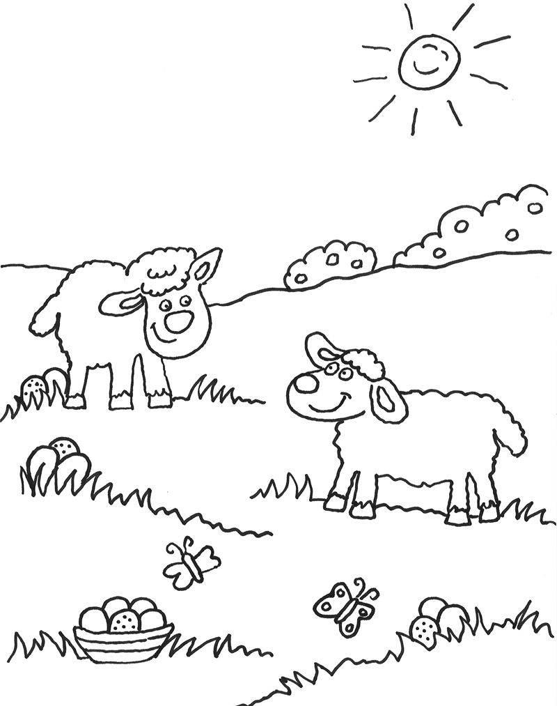 Ausmalbild Tiere: Schafe auf der Wiese kostenlos ausdrucken
