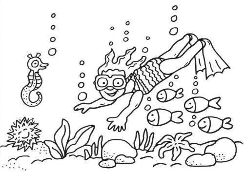 Kostenlose Malvorlage Sommer Taucherin Im Meer Ausmalen Zum Ausmalen