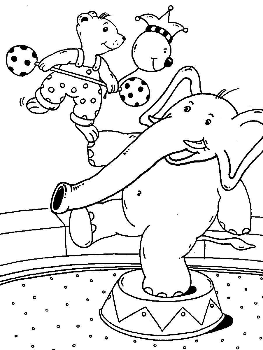 Ausmalbild Rund Ums Spielen Bär Und Elefant Im Zirkus