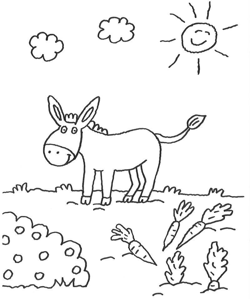 Kostenlose Malvorlage Tiere: Esel und seine Möhren zum Ausmalen