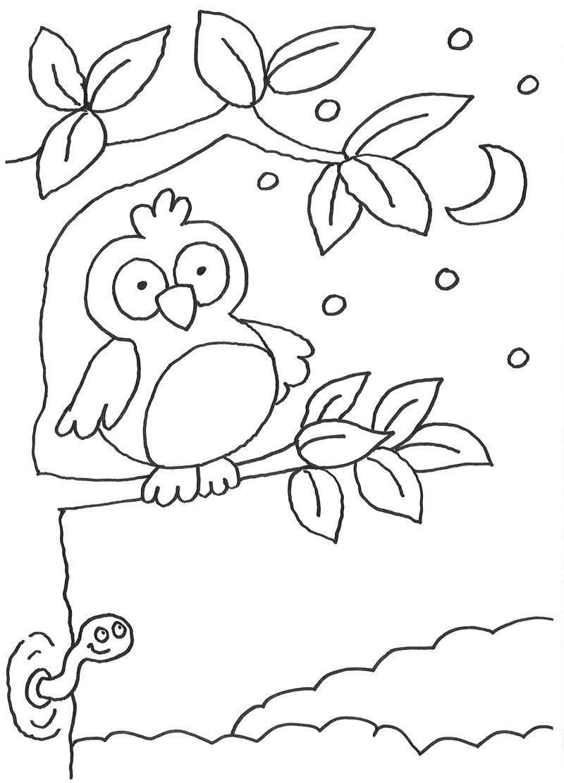 kinder malvorlagen eulen  x13 ein bild zeichnen