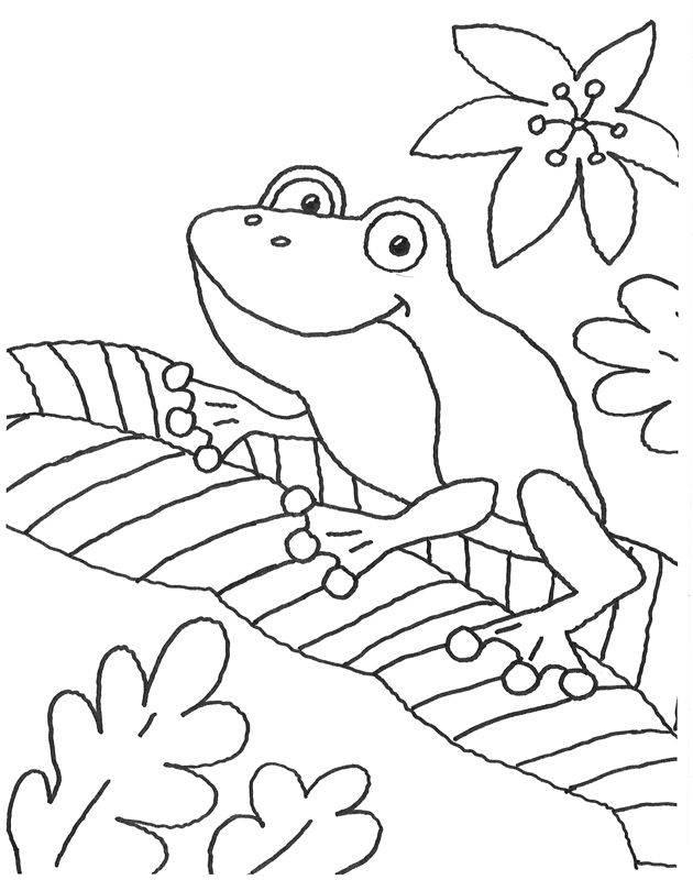 Ausmalbild Tiere Frosch Auf Einem Blatt Kostenlos Ausdrucken