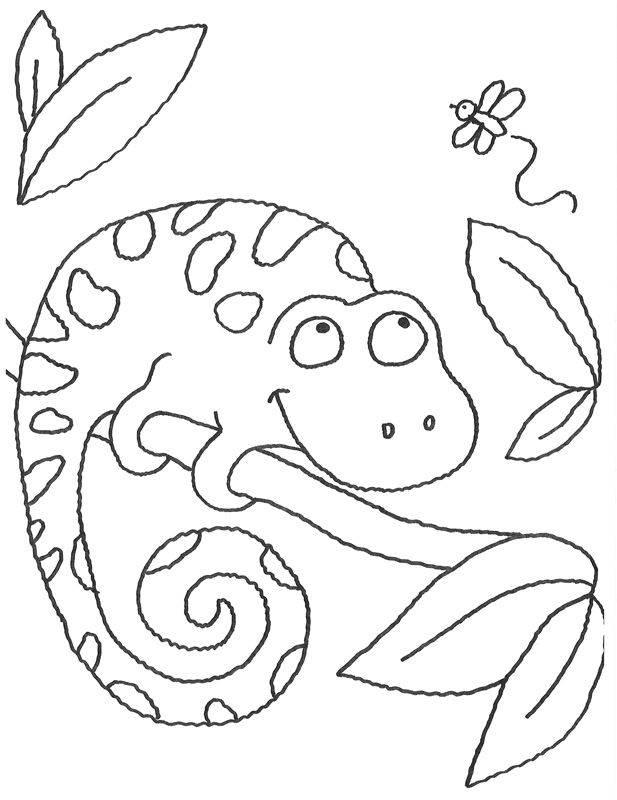 ausmalbild tiere: chamäleon auf einem ast kostenlos ausdrucken