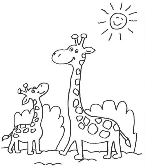 Kostenlose Malvorlage Tiere Giraffenfamilie Zum Ausmalen