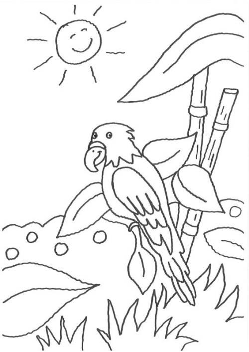 Kostenlose Malvorlage Vögel Papagei Und Die Lachende Sonne Zum Ausmalen