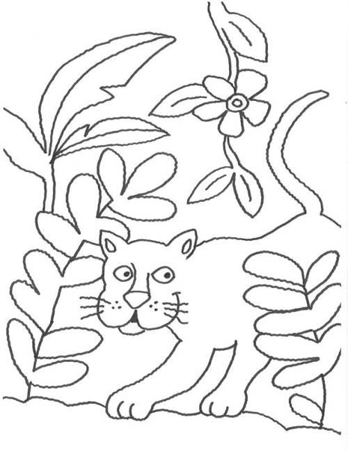 Kostenlose Malvorlage Tiere Puma Im Gebüsch Zum Ausmalen