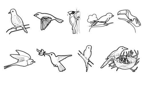 Kostenlose Malvorlage Tiere Vögel Zum Ausmalen Zum Ausmalen