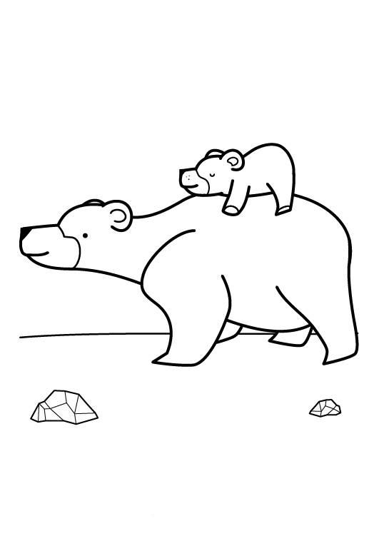 Ausmalbild Tiere Eisbärenfamilie Zum Ausmalen Kostenlos Ausdrucken