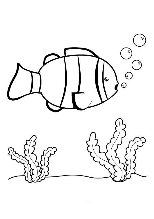 Kostenlose Malvorlage Tiere Fisch Im Meer Zum Ausmalen Zum Ausmalen